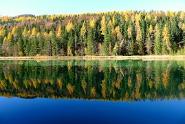 autumn-1521691__1801
