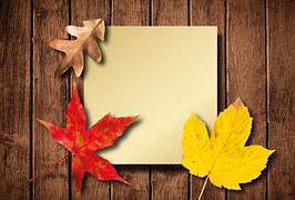 autumn-1646799__1801